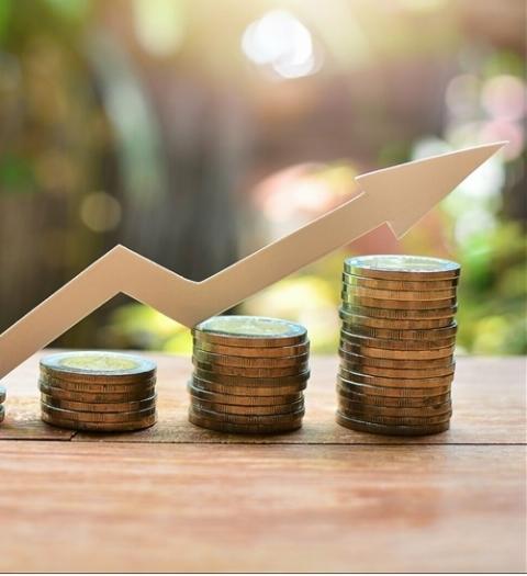 Выбор направлений инвестирования, как механизм формирования дополнительных конкурентных преимуществ компаний в современных условиях.